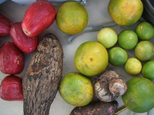 Produce of the West Indies