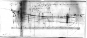 Grayhound lines plan