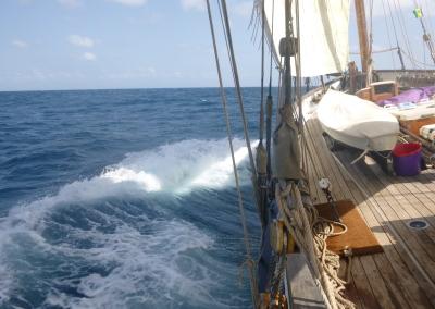 Caribbean 2 012