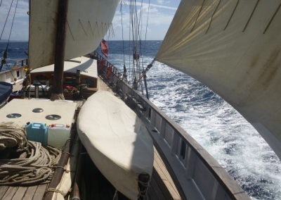Caribbean 225